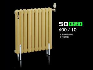 50B2B-600/10散热器